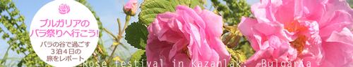 ブルガリアのバラ祭りへ行こう!